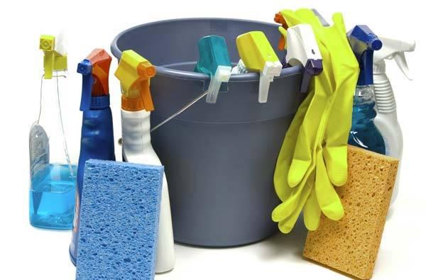 Эти средства также понадобятся в процессе уборки