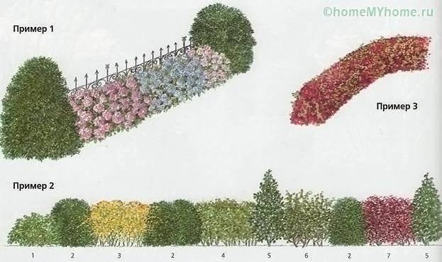 Идеи по оформлению изгороди и входа