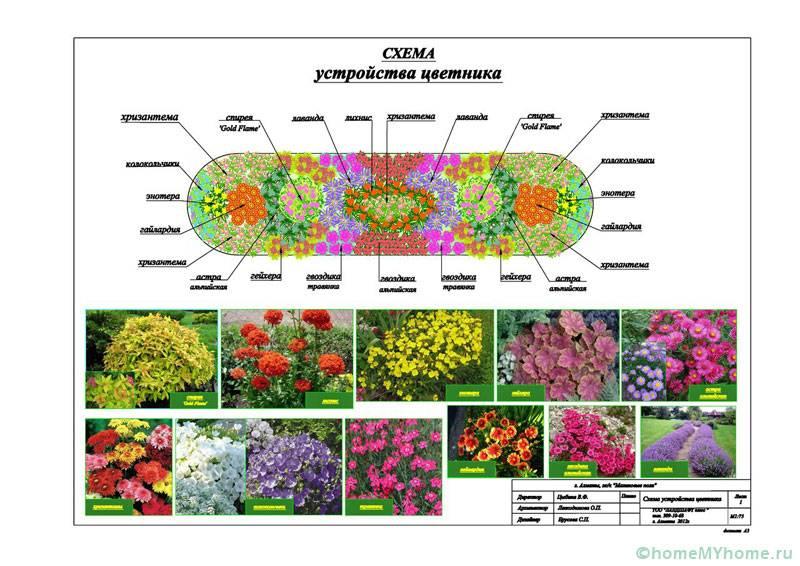 Дизайн-проект цветника