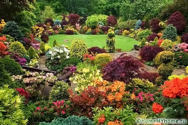 Альпинарий очень эффектно смотрится во время цветения растений