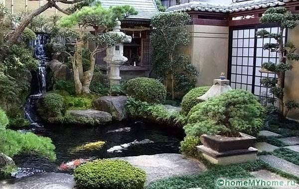 Нюансы китайского сада