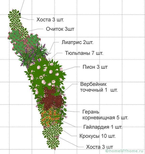 Вариант схемы размещения цветов