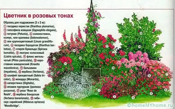 Цветник в розовой цветовой гамме