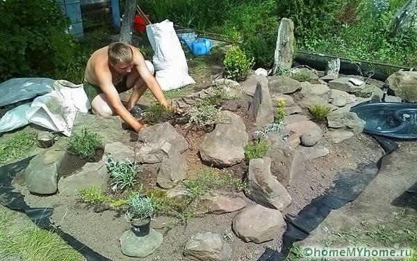Использование камней различной величины должно сочетаться с высаживаемыми растениями