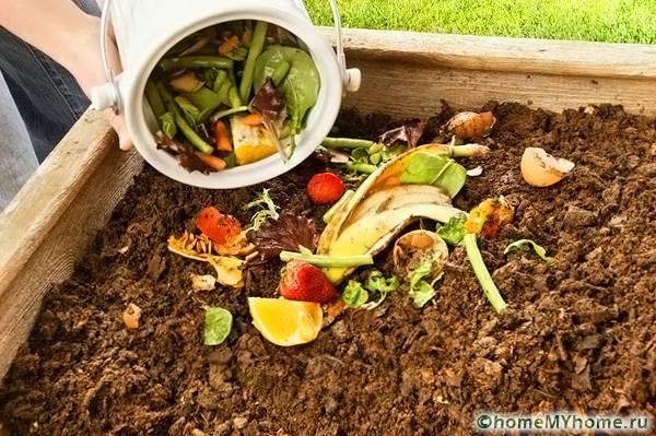 Отходы растений, фруктов и овощей являются самым лучшим и полезным материалом