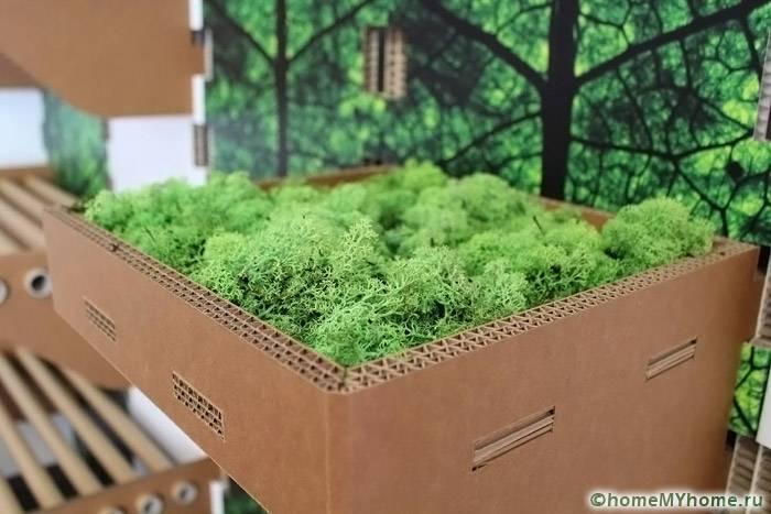 Картон – экологически чистая продукция