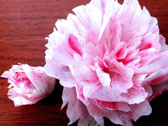 Чтобы пион был реалистичнее, используют не однотонную бумагу, а белую, подкрашивая заготовки розовой краской