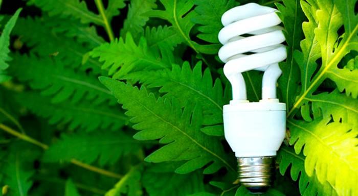 Люминесцентные устройства экологичны