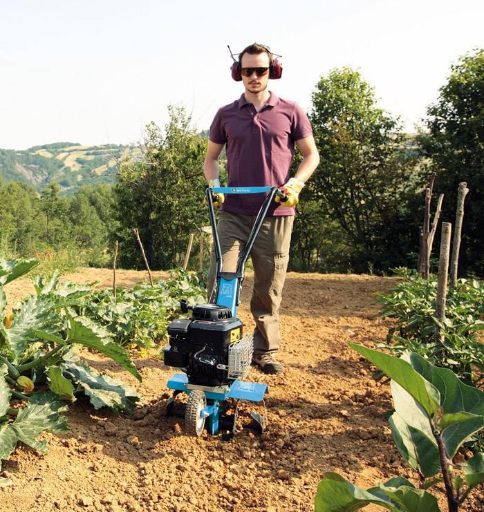 Подберите подходящий вариант для вашего огорода