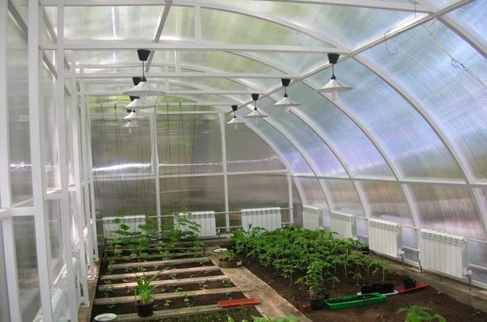 Комбинирование разных грядок в зависимости от растений