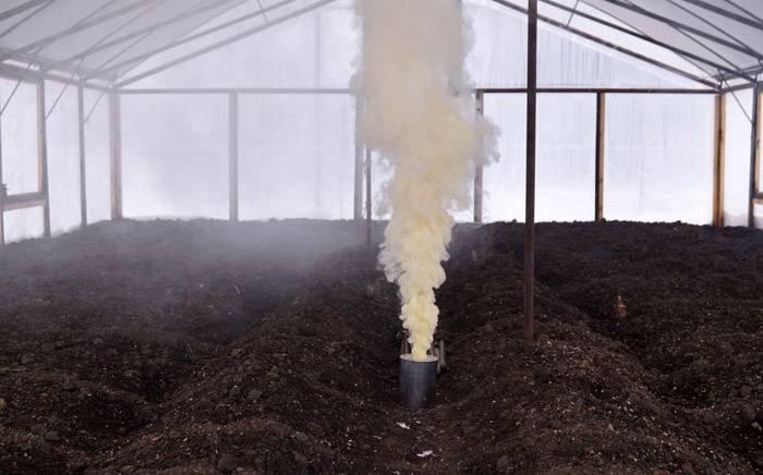 Дезинфекция почвы в теплице