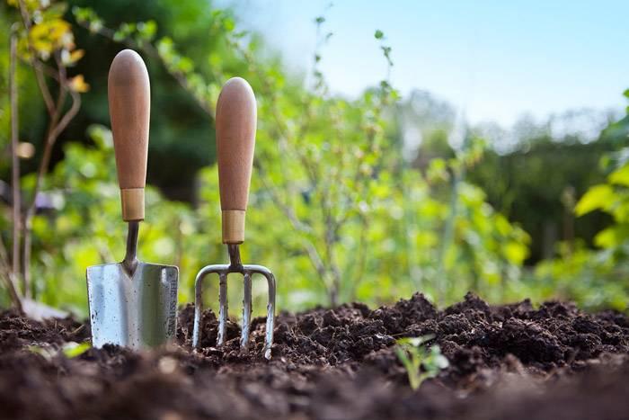По весне из сараев достают необходимый инструмент