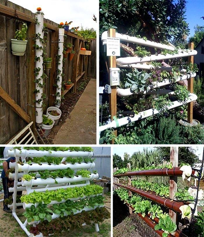 Варианты посадки овощей в пластиковые трубы