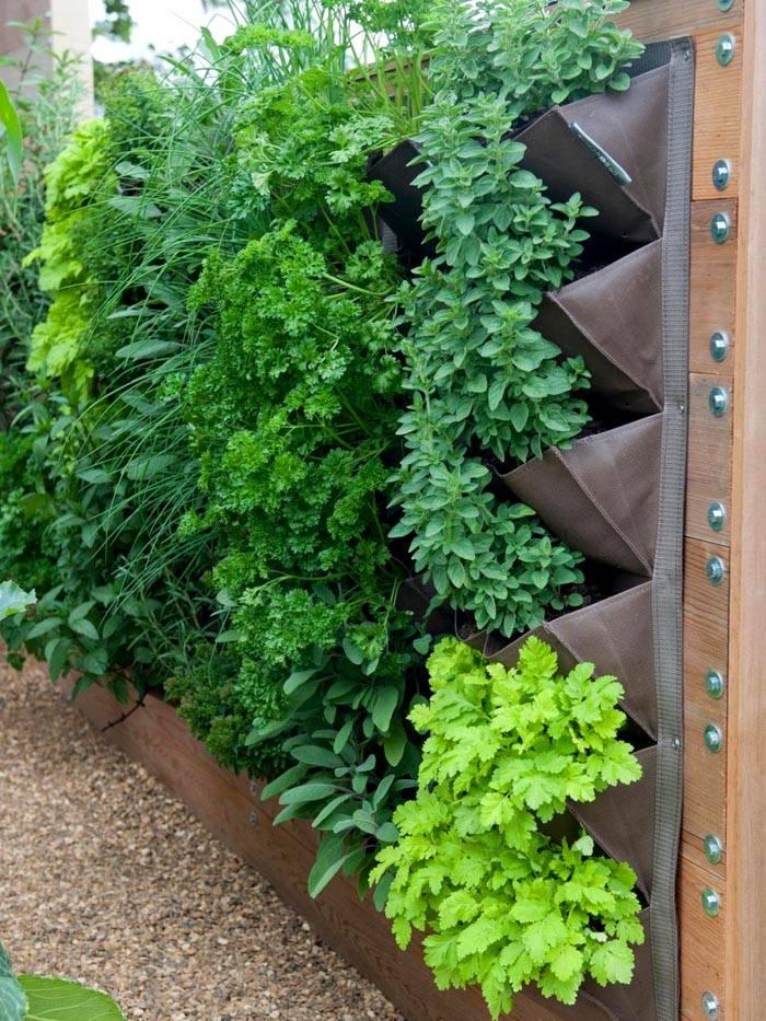 Зеленая стена – новое красивое и удобное решение для маленького участка
