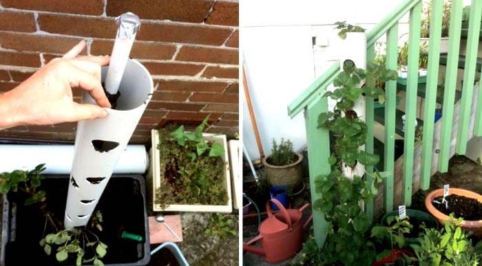 Благодаря системе из двух труб, уход за растениями будет более качественным