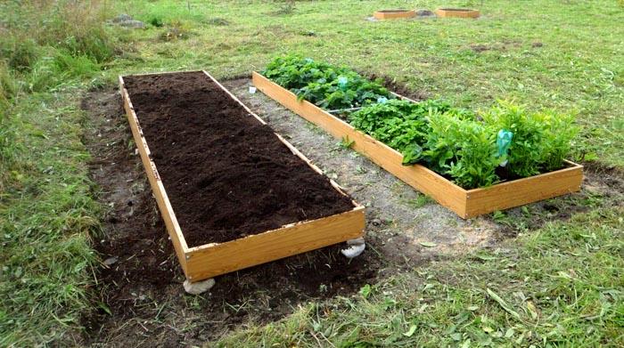 Засыпка плодородной почвы