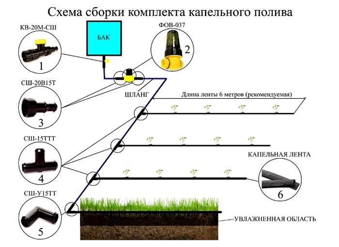 Сборка конструкции капельного полива