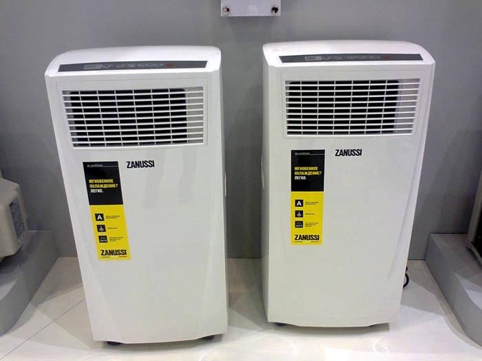 В некоторых моделях есть встроенные ионизаторы воздуха
