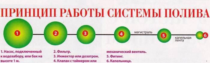 На схеме показан принцип работы устройства
