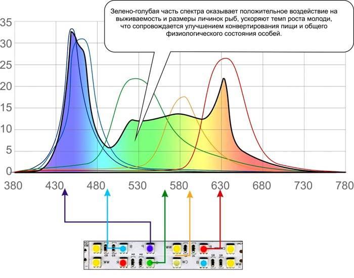 Из нескольких светодиодов можно собрать источник с оптимальным распределением спектрального диапазона