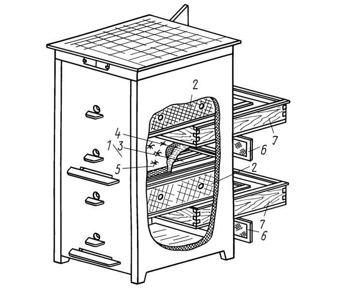 Этот рисунок можно использовать для создания многокорпусного улья своими руками на 10 рамок
