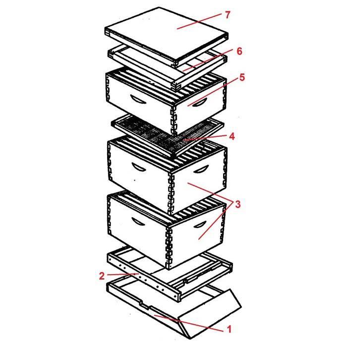 Основные элементы классического «домика для пчел» изображены на этом рисунке
