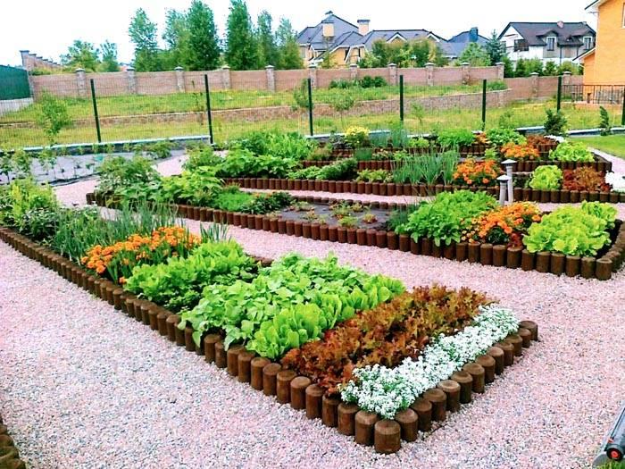 Огород в деревне – это непросто грядки. Продуманная форма и посадки превратят его в дачное украшение