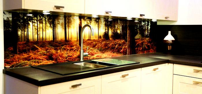 Фартук для кухни из стекла: каталог, фото