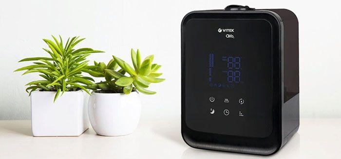 Дозированное увлажнение воздуха оказывает благоприятное влияние на растения