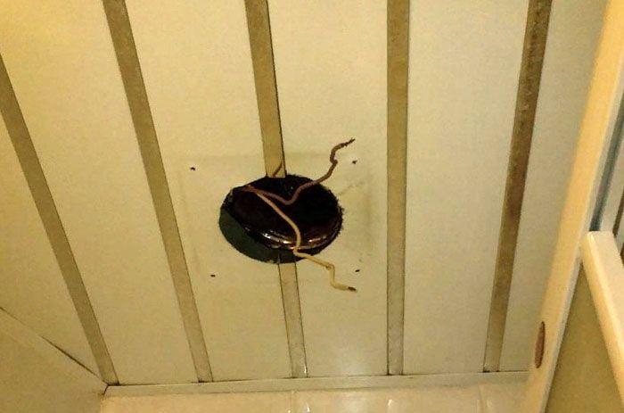 Проще устанавливать легкий канальный вентилятор 125 мм в подвесном потолке
