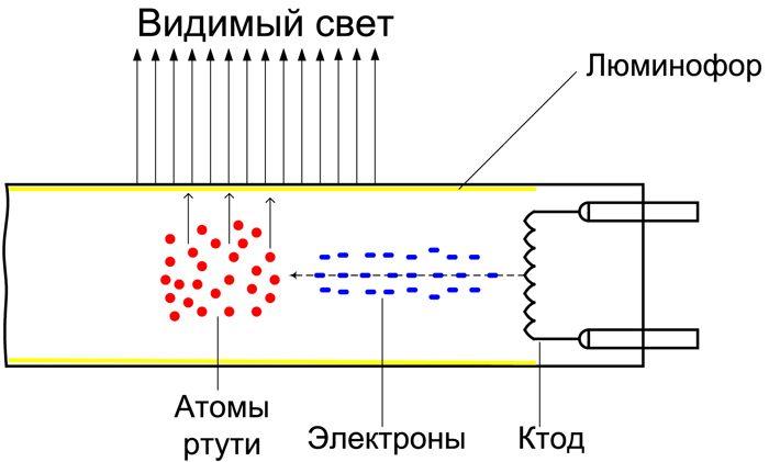 Схема строения УФ-лампы
