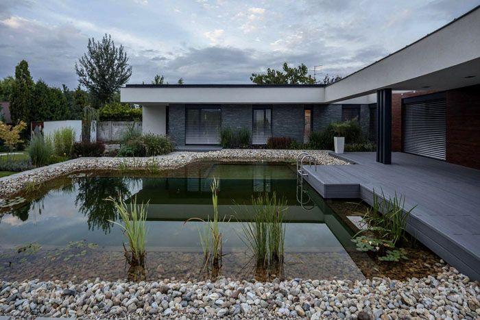 Хорошо оснащенный современный бассейн создан в виде природного открытого водоема
