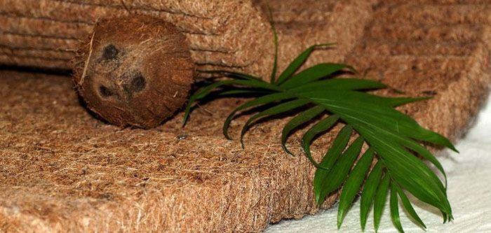 Так выглядит слой, полностью изготовленный из межплодника кокосового ореха