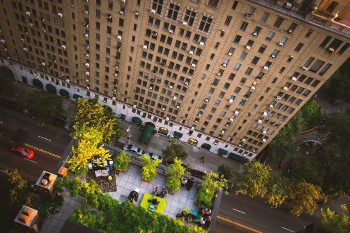 Зелёный уголок на крыше в центре мегаполиса