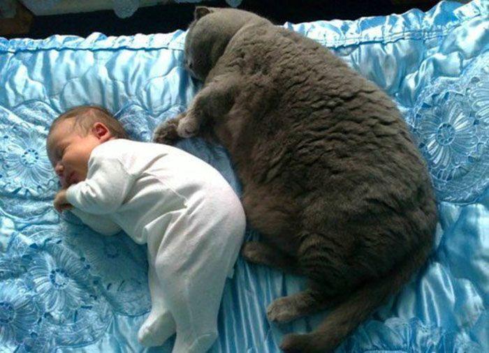Если отдать предпочтение пружинам, не исключено, что они не справятся с нагрузкой и неравномерно деформируются, образуя вмятины, которые помешают вам принять комфортную для сна позу