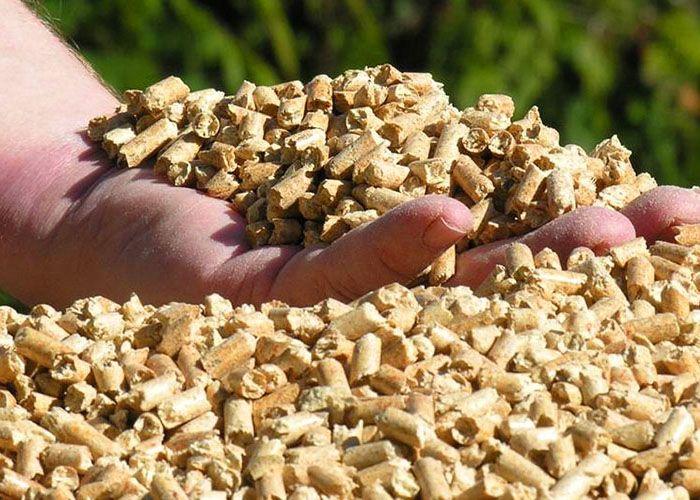 Топливные гранулы – пеллеты, изготавливаются из отходов различных пород дерева