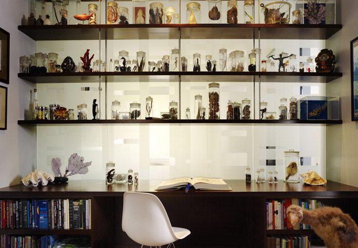 Любимая коллекция – отличное украшение интерьера