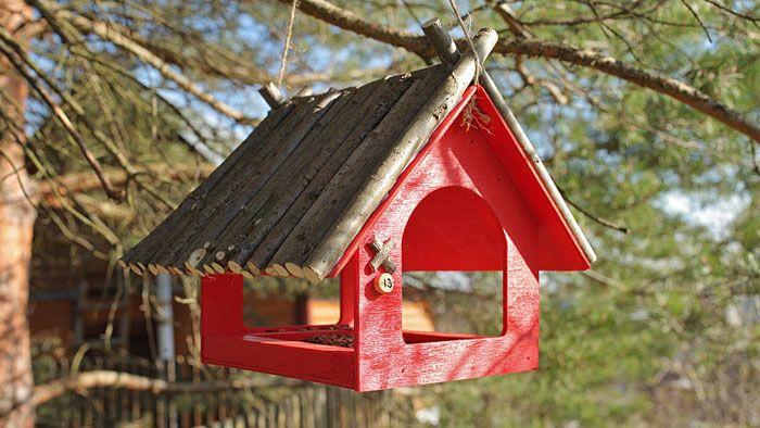 Так как птички находят еду с помощью зрения, нам нужно сделать такую конструкцию, которую заметят будущие едоки
