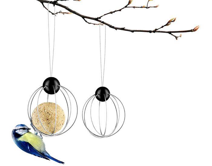 Подвесная кормушка привлекает многих птиц