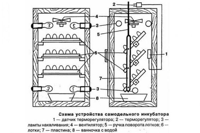 Схема обустройства инкубатора в холодильнике