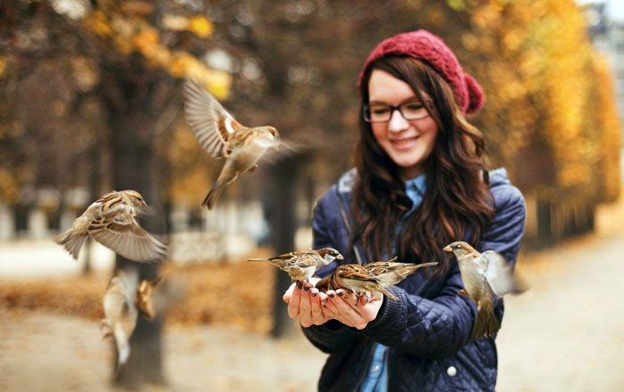 Вы сделаете доброе дело, если накормите этими крупами птиц, можете сложить их в герметичный пакет и после уборки отправиться в парк