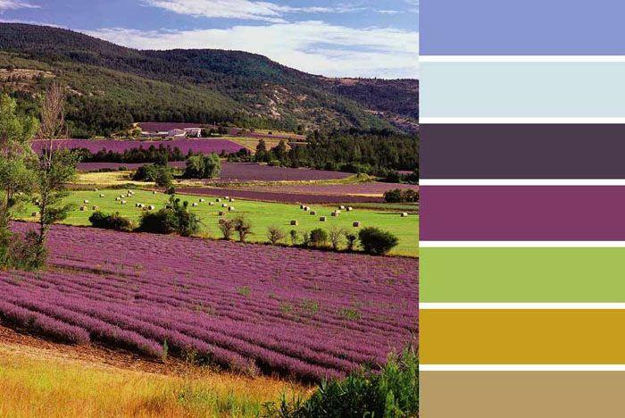 Цветовые вариации возможны в пределах такой палитры