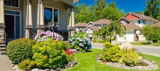 Ландшафтный дизайн двора частного дома: фото