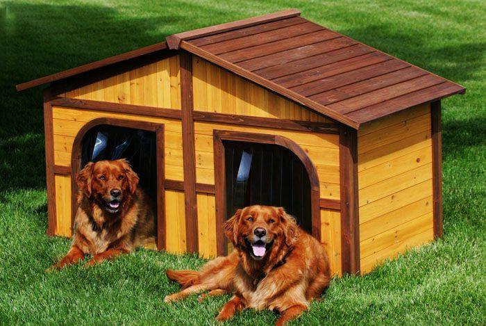 Если собаки две, то можно сделать два входа