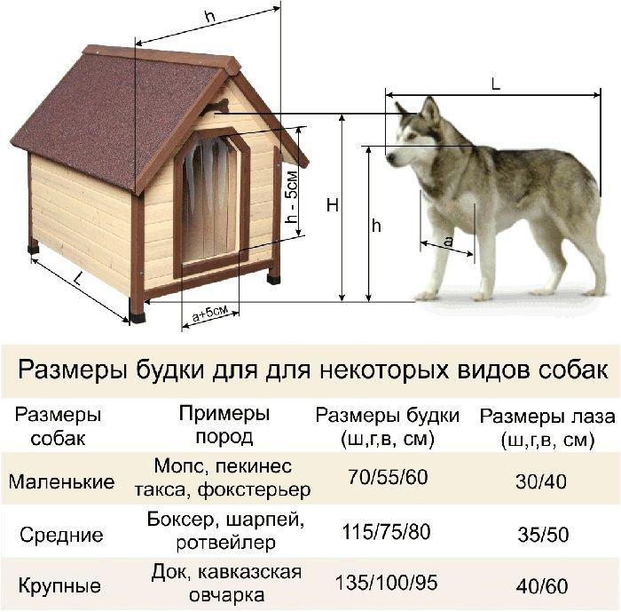 Размеры будки для собаки зависят от породных данных. Учитывая эти показатели, проектируют не только внешнюю часть постройки, но и делают скидку на утеплитель — он украдёт немного пространства