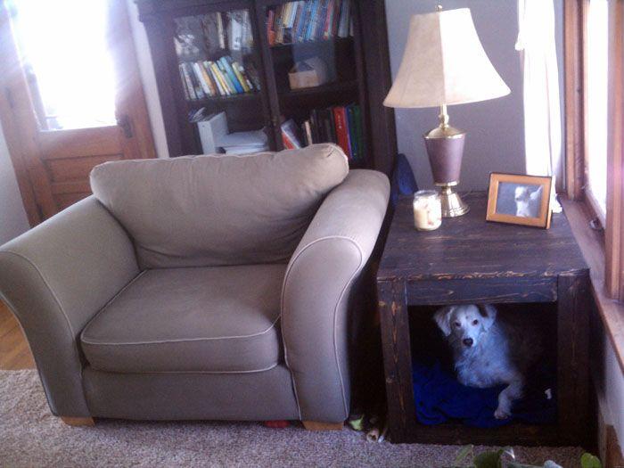 Ещё один простой вариант дома для домашней собаки небольшого размера