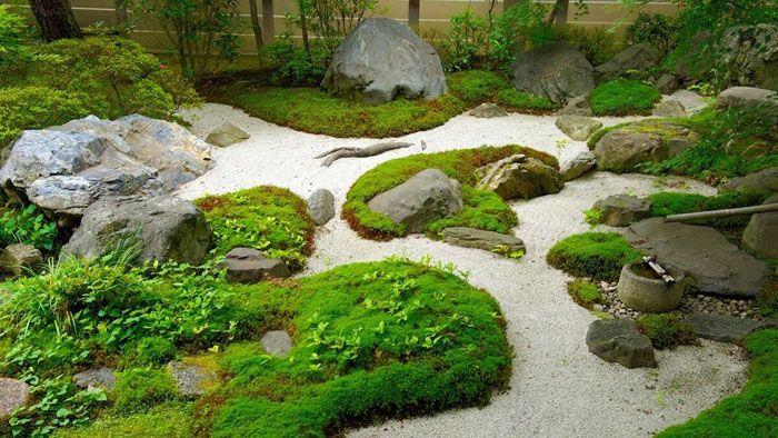 Украшением сада будут мхи, оригинальной формы коряги, камни