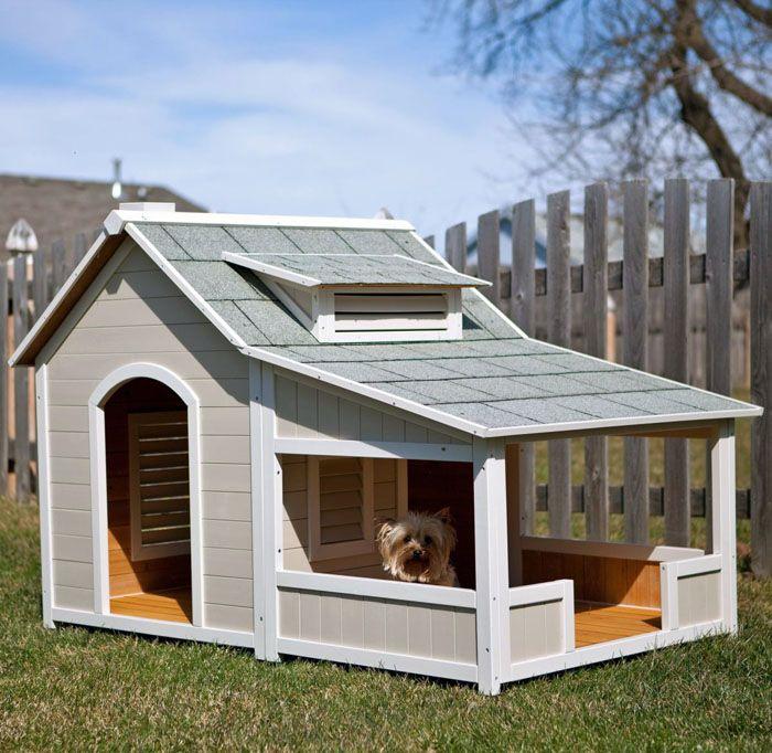 Веранда прячет пса от дождя и снега, но не защищает от ветра. Хотя если соседние строения выполняют ветрозащитную функцию, то есть смысл поставить такую красоту во дворе