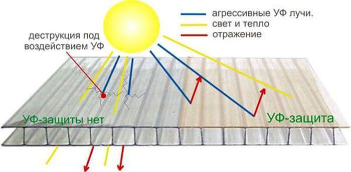 Наличие защитного слоя увеличивает сроки эксплуатации теплицы без проведения ремонтных работ