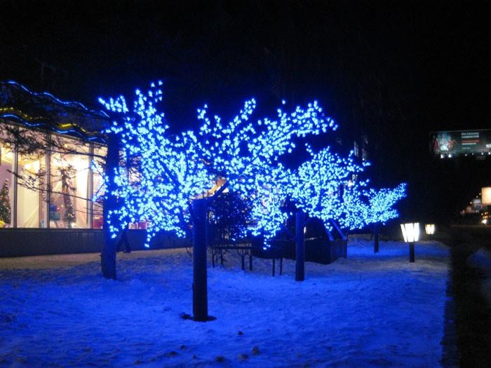 Световые деревья приглашают войти в торговый центр в вечернее время